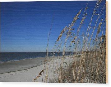 Blue Beach Wood Print by Barbara Northrup