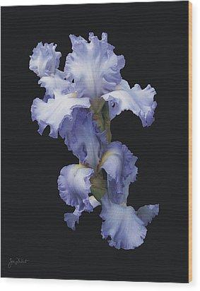 Blue Bearded Iris Wood Print