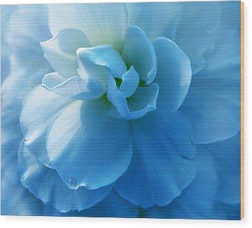 Blue Begonia Flower Wood Print by Jennie Marie Schell