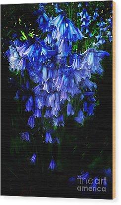 Blue Bells Wood Print by Scott Allison