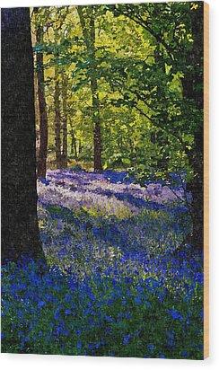 Bluebells Wood Print