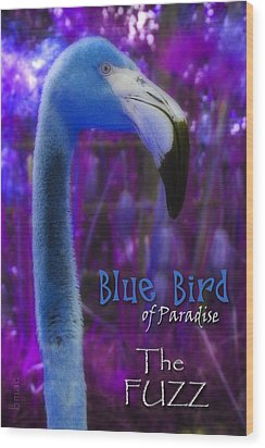 Wood Print featuring the photograph Blue Bird Of Paradise - The Fuzz by Barbara MacPhail