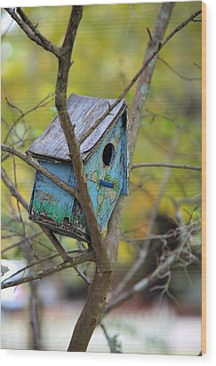 Wood Print featuring the photograph Blue Birdhouse by Gordon Elwell