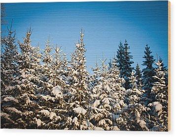 Blue Blue Sky Wood Print by Robert Hellstrom