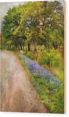 Blue Bonnet Path Wood Print