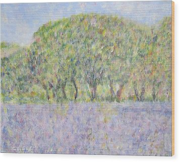 Blue Bonnets  Field In  Texas Wood Print