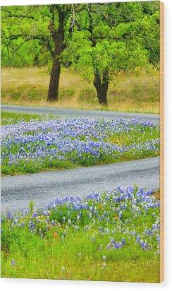 Blue Bonnets Wood Print by Joan Bertucci