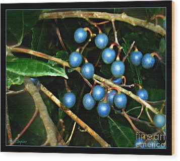 Wood Print featuring the photograph Blue Bush Berries  by Leanne Seymour
