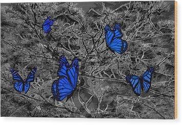 Blue Butterflies 2 Wood Print by Barbara St Jean