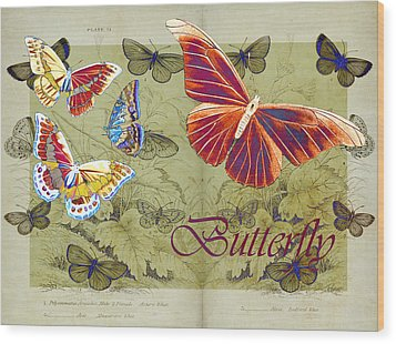 Blue Butterfly - Orange On Green - S02a Wood Print by Variance Collections