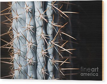 Blue Cactus Wood Print by John Wadleigh