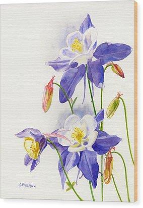 Blue Columbine Blossoms Wood Print by Sharon Freeman
