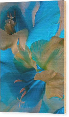 Wood Print featuring the photograph Blue Danube by Bobby Villapando