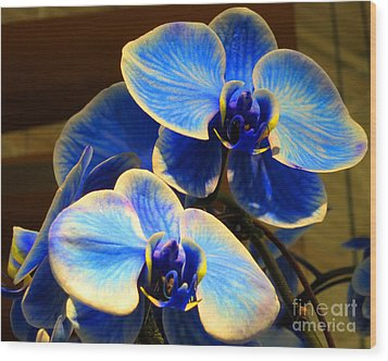 Blue Diamond Orchids Wood Print by Patricia Januszkiewicz