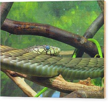 Blue Eyed Snake Wood Print by Patricia Januszkiewicz
