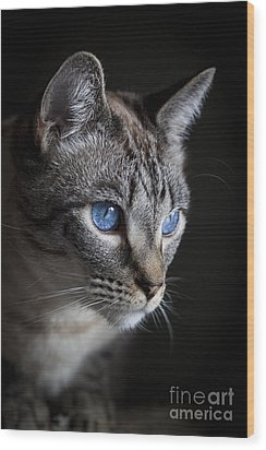 Blue Eyes Wood Print
