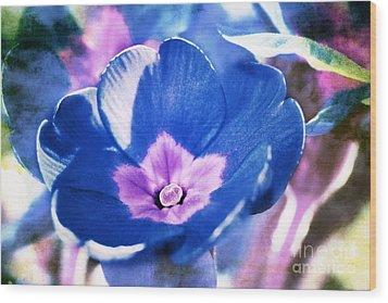 Blue Flower Wood Print by Angela Bruno