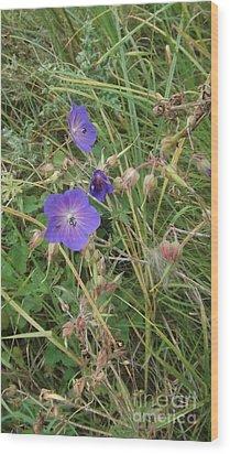 Blue Flowers Wood Print by John Williams