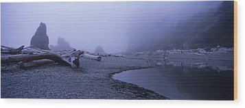 Blue Fog Beach Wood Print by Elena Bouvier