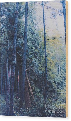 Blue Forest By Jrr Wood Print by First Star Art