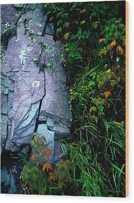 Blue Granite Wood Print by Ric Soulen