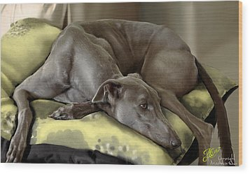 Blue Grey Wood Print by Ari Caer