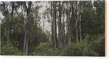 Blue Gum Eucalyptus Forest Wood Print by Brad Scott