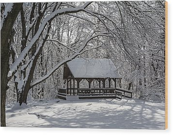 Blue Heron Park After Snowfall Wood Print by Kenneth Cole