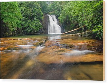 Blue Hole Falls Wood Print by Scott Moore