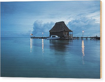 Blue Hour Landscape Wood Print by Yuri Santin