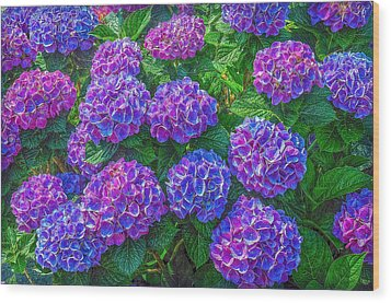 Wood Print featuring the photograph Blue Hydrangea by Hanny Heim