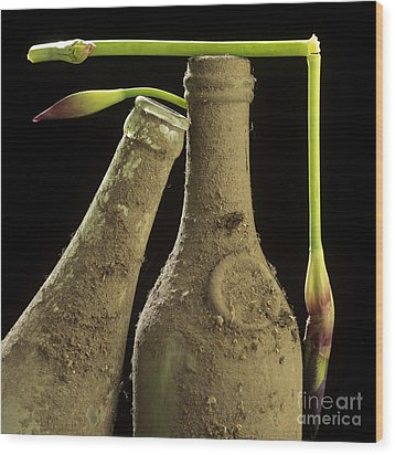 Blue Iris And Old Bottles Wood Print by Bernard Jaubert