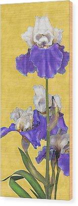 Blue Iris On Gold Wood Print by Jane Schnetlage