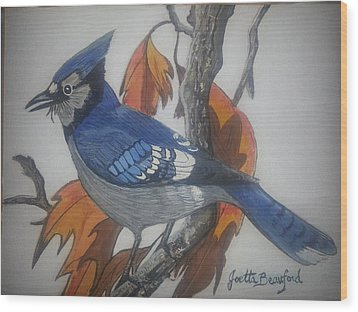 Blue Jay At Fall Wood Print