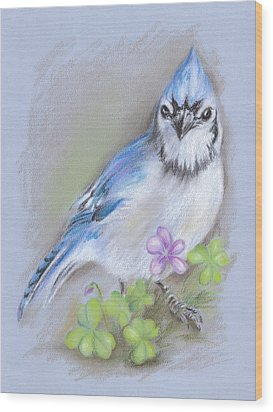 Blue Jay In Spring With Oxalis Wood Print