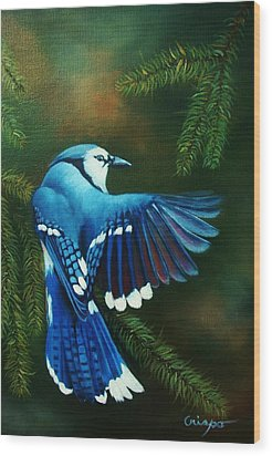 Blue Jay Wood Print by Jean Yves Crispo