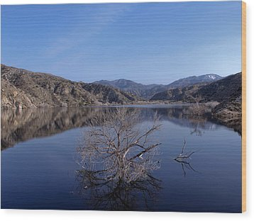 Wood Print featuring the photograph Blue Lake by Ivete Basso Photography
