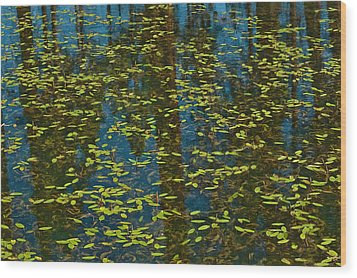 Wood Print featuring the photograph Blue Lake Reflections by Sherri Meyer