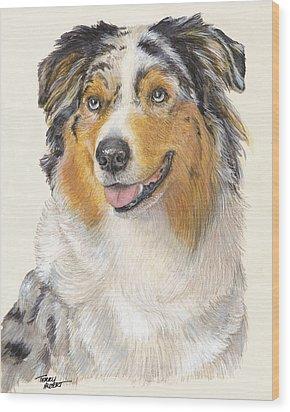 Blue Merle Australian Shepherd Wood Print