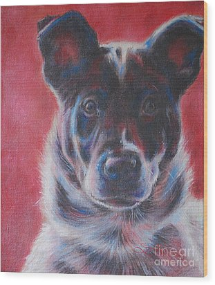 Blue Merle On Red Wood Print by Kimberly Santini