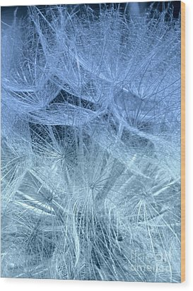 Blue Mist Wood Print by France Laliberte
