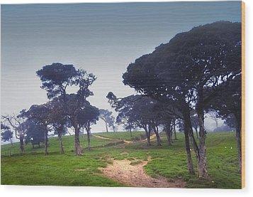 Blue Mist Silence. Sri Lanka Wood Print by Jenny Rainbow