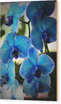 Blue Monday Wood Print