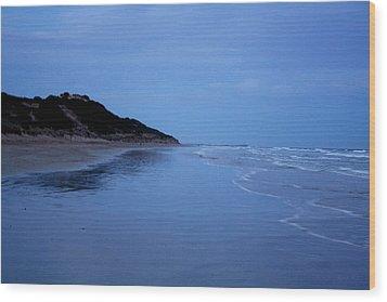 Blue Mood Wood Print by Amanda Holmes Tzafrir