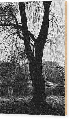 Blue Mountain Pond Wood Print by Paul Gioacchini