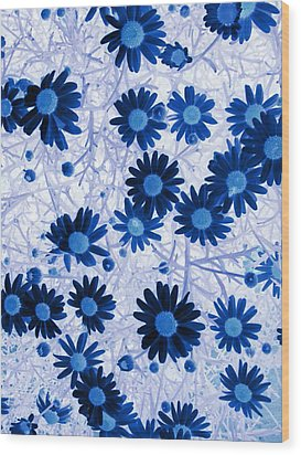 Wood Print featuring the digital art Blue Mystical Daisies  by Sandra Foster