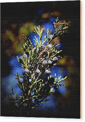 Blue Nature Wood Print by Milena Ilieva