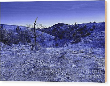 Blue Night Wood Print by Mickey Harkins
