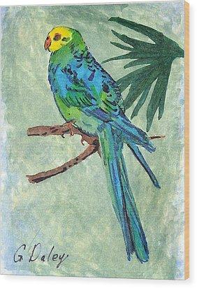Blue Parakeet Wood Print by Gail Daley
