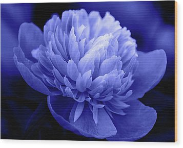 Blue Peony Wood Print by Sandy Keeton